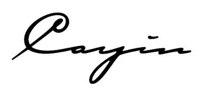 Cayin是什么牌子_凯音品牌怎么样?