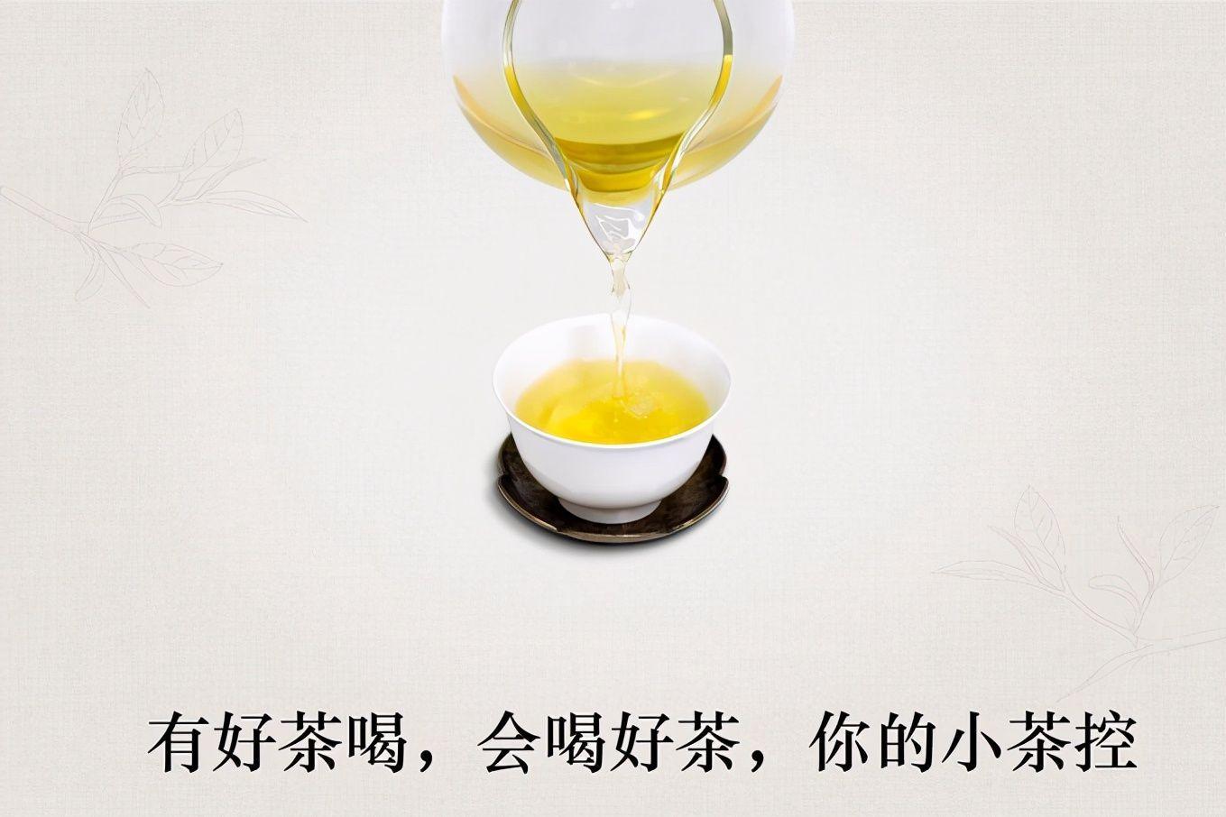 """快来品尝树梢上的甘甜!古树茶品牌""""小茶控""""上线6款产品-1"""
