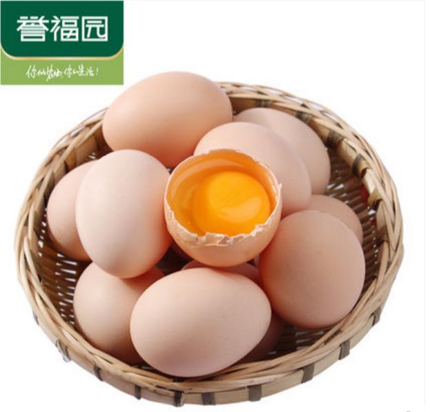 熊孩子,在家要孵鸡蛋。。。