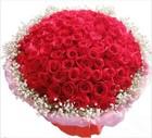 诗琪鲜花红玫瑰花束