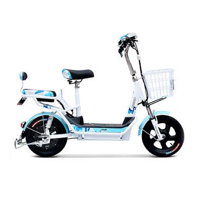 电动自行车哪个牌子好_2021电动自行车十大品牌-百强网