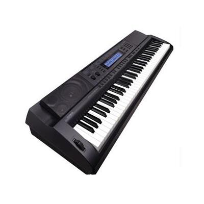 电子琴哪个牌子好_2021电子琴十大品牌-百强网